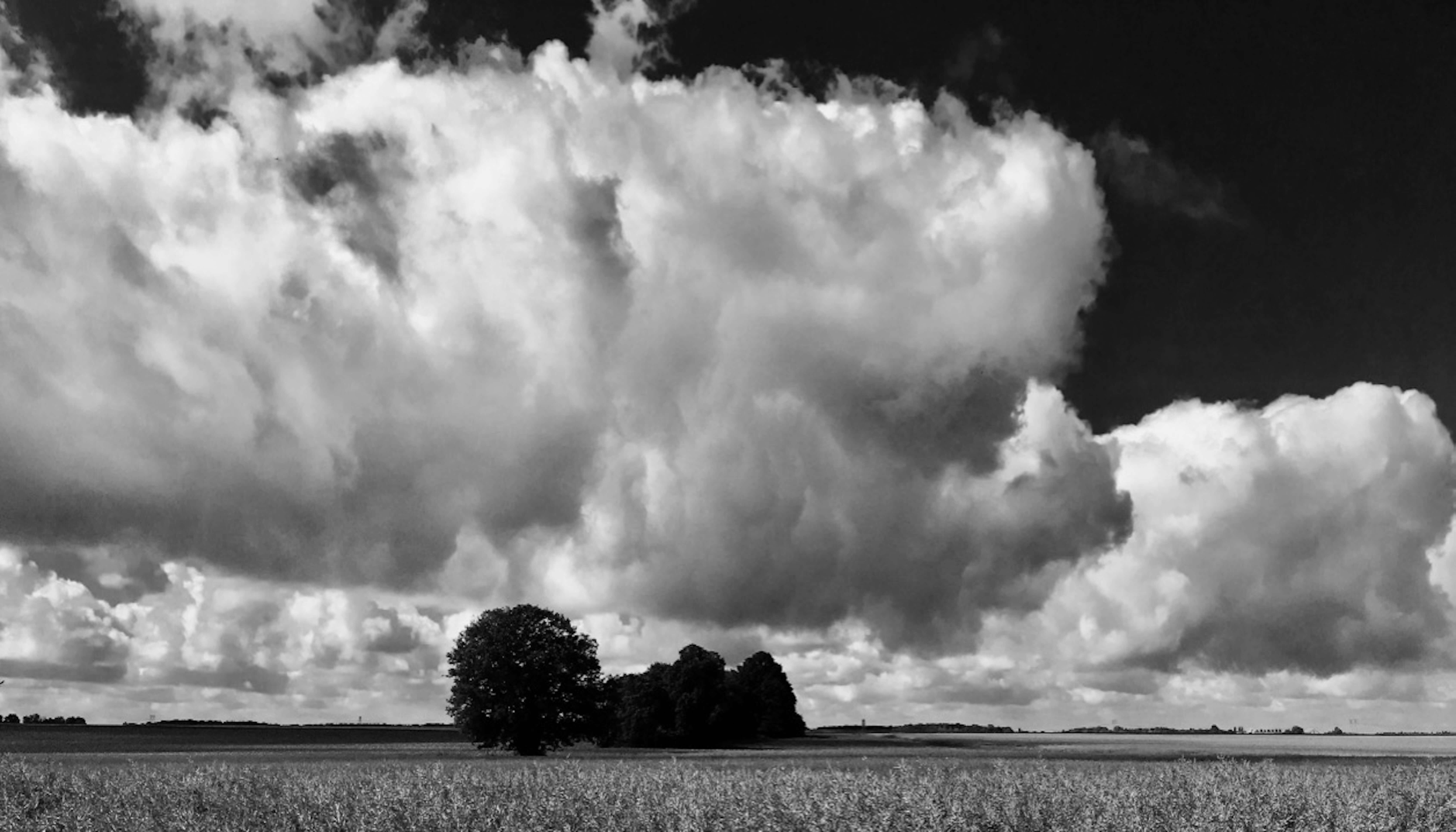 L'immensité des paysages communs